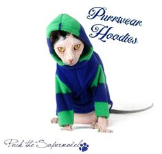 PurrWear Cat Clothing for Sphynx  Hoodie Long Sleeve by PurrWear