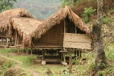 Phom Naga houses at Auching village, one of the 36 Phom Naga villages. India.