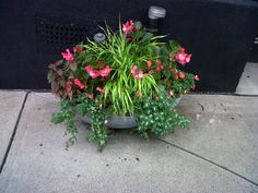 SHADE container, Greenwich CT