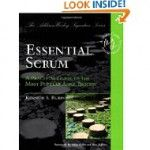 Essential Scrum: A Practical Guide to the Most Popular Agile Process is considered a complete reference about this particular product development strategy. More than just a process, Scrum as a framework and an organizational structure provides answers and solutions in helping companies develop products of value. However, along with answers, it also brings certain questions, particularly to the role and responsibility of the project manager in this new structure.