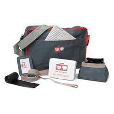 Pet Travel Bag And Safety Kit, $42, now featured on Fab.