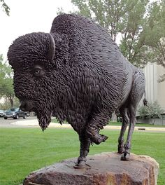 bison created from construction rebar by artist Bennett Brien for North Dakota centennial.... My cousin made this...