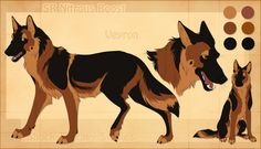 STS Dog - Veyron by ShockTherapyStables.deviantart.com on @deviantART