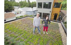 Green roofs offer promise of savings to city