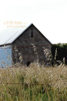 Little Roux Photography Rustic Old Kansas Shake Shingle Barn Barbed Wire Prairie Grass Still Life Fine Art Photography Landscape