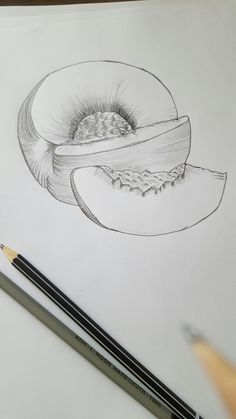 Daily drawing by grzanax