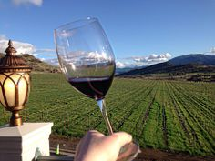 Bella Fiore Estate and Winery in southern Oregon.  Spectacular!