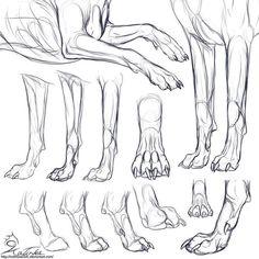 Resultado de imagem para dog anatomy drawing basic animal drawings Learn To Draw People - The Female Body Animal Sketches, Animal Drawings, Drawing Sketches, Art Drawings, Drawing Animals, Sketching, Dog Anatomy, Anatomy Drawing, Animal Anatomy
