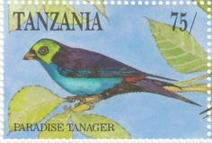 Paradise Tanager stamps - mainly images - gallery format