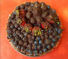 torta cocco cioccolato mirtilli e fragole cencecicin.com 03