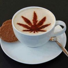 Good morning get real quality weed marcosgriffin20@gmail
