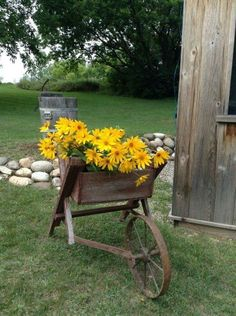 Country Charm... old wagon of yellow flowers