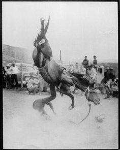 SO YOU WANT TO BE A BRONC RIDER-from the Western Horseman-july 1953  Here Robert Sorrells is coming out of the saddle of JET PILOT at San Acacia. He drew the same horse the following Saturday at Truth or Consequences, N.M. -and rode him to a standstill> The crowd collected a large purse and gave it to Robert. He is damned sure a bronc rider.