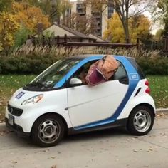 T-Rex is leaving on a jet plane  but first watch the hilarity that is your favorite Dino stuffing himself into a Smart Car   https://youtu.be/v6vKqVqN1_s  Contact us at 585-482-8780 for more information or check out select costumes and accessories on our Amazon page or website www.arlenescostumes.com including T-Rex Inflatable Costumes from our friends at @rubiescostumeco           #christmas #santa #mrssanta #claus #trex #jet #smartcar #holiday #travel #dino #rubiescostumeco…