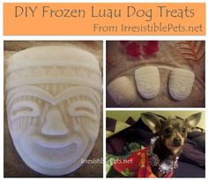 DIY Frozen Luau Dog Treats (IrresistiblePets.net)