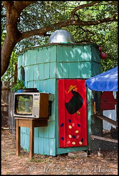 cool turquoise chicken coop for the urban chicken