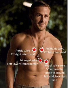 This should motivate any female nursing student with eyes to practice auscultating heart sounds... haha :)