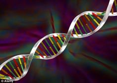 Everything is all about the DNA.