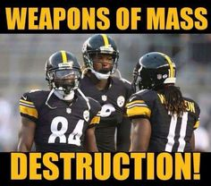Weapons https://www.fanprint.com/licenses/pittsburgh-steelers?ref=5750