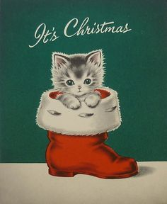 vintage Christmas card kitten in Santa boot