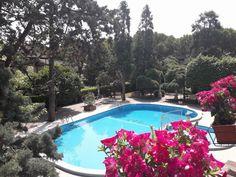New Tiffany's Park i Lido di Jesolo – uppdaterade priser för 2019 Tiffany, Parka, Outdoor Decor, Home Decor, Decoration Home, Room Decor, Home Interior Design, Parkas, Home Decoration