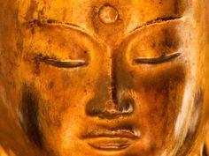 """... Modelos Tibetano y Occidental de """"salud mental""""."""