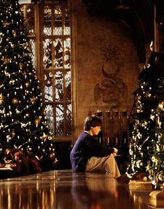 Christmas at Hogwarts. oh how i wish hogwarts was real. Natal Do Harry Potter, Harry Potter Navidad, Magia Harry Potter, Harry Potter Weihnachten, Mundo Harry Potter, Harry Potter Movies, Harry Potter Tumblr, Harry Potter Hogwarts, Hogwarts Christmas