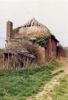 Cottages at Wrenningham, Norfolk -