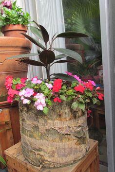 Palm tree stump planter
