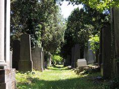 Alter jüdischer Friedhof | Stadtbekannt Wien | Das Wiener Online Magazin