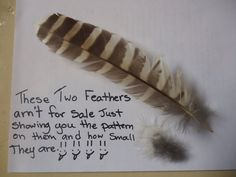 checked for by SophiaMariaDesigns Etsy Shop Names, My Etsy Shop, Owl Feather, Feathers, Harvest, Board, Handmade Gifts, Pattern, Sewing Accessories