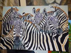 zebras a new work i left in south africa