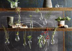 Sean Dagen's Shoot for Roost Home Furnishings | Poppy Creative Agency #Roost #SanFrancisco @seandagen