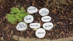 Shakespeare Stones I love this! However, I might do Lord of the Rings stones. Because Hobbits love gardens. Plus I'm a nerd. Flora Garden, Garden Of Eden, Painted Earth, Painted Rocks, Personalized Signs For Home, Slate Signs, Outdoor Fun For Kids, Rustic Stone, Backyard Paradise