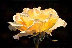 """""""Golden Elegance II"""" by Lauren Knode Pastel ~ 16 x 24"""
