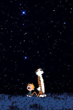 Calvin and Hobbes - Starry Night