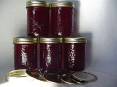 Red Currant & Raspberry Jelly I first tried this recipe from the Complete Book of Small Batch Red Currant Jam, Currant Bush, Currant Jelly, Jelly Recipes, Jam Recipes, Canning Recipes, Recipies, Raspberry Jelly Recipe, Red Raspberry