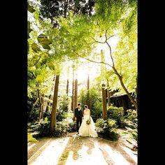 【masa03_photo】さんのInstagramをピンしています。 《あったかい光と寄り添う影。いつまでもお幸せに😊#photicpeer #ナンザンハウス #ウェディングフォト #ウェディングドレス #ウェディング #ロケーションフォト #ヘアメイク #前撮り #bridal #ブライダル #名古屋 #tokyocameraclub #thetreatdressing #プレ花嫁 #花嫁 #東海プレ花嫁 #結婚 #結婚式 #instagood #instadaily #instagram #wedding #weddingdress #weddingphotography#光#森#photowedding#portrait#ポートレート#カメラ女子》 Wedding Dresses, Instagram Posts, Bride Dresses, Bridal Gowns, Wedding Dressses, Bridal Dresses, Wedding Dress, Wedding Gowns