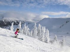Here is our list of the best ski resorts in Colorado as rated by local skiers. Read about the pros and cons of top Colorado ski resorts! Check out which ski resorts made our cut. Canada Ski Resorts, Japan Ski Resorts, Tahoe Ski Resorts, Colorado Ski Resorts, Best Ski Resorts, Off Piste Skiing, Go Skiing, Ski Trip Packing List, Ski Packages