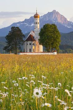 St Coloman Church, Schwangau, Bavaria, Germany by Laurie Noble The Places Youll Go, Places To See, Beautiful World, Beautiful Places, Beau Site, Church Architecture, Voyage Europe, Cathedral Church, Old Churches