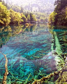 Jiuzhaigou National Park, Sichuan, China. Interpret literally the five Chinese elements (water, earth, wood, metal, fire) and you may understand the attraction that Sìchuān has had for millennia. Sìchuān means 'Four Rivers' and the name pays tribute to that most essential element, water.