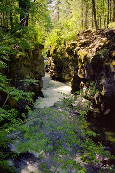 Rogue River Gorge, Oregon