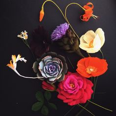 Paper Flowers by Kate Alarcon