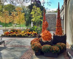 A Landscape Designer Branches Out Longwood Gardens, Organic Container Gardening, Rogers Gardens, Autumn Garden, Front Porch, Landscape Design, Plants, Landscapes, Fall