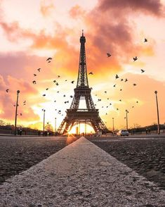 Eiffel Tower - Paris ✨💛💛💛✨ Picture by ✨✨ . for a feature 💛 Paris Images, Paris Pictures, Paris Photos, Eiffel Tower Photography, Paris Photography, Nature Photography, Paris Torre Eiffel, Paris Eiffel Tower, Paris Wallpaper