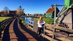 Zaandam, North Holland #Windmills #Holland #TravelBug #TravelGram #TravelTheWorld #GlobeTrotter