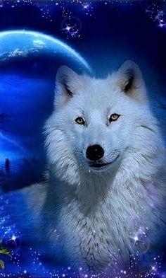 i like it this cool dog Artwork Lobo, Wolf Artwork, Majestic Animals, Animals Beautiful, Cute Animals, Beautiful Wolves, Wolf Photos, Wolf Pictures, Wolf Love