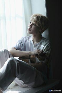 Jimin jiminie mochi jm bts my life my love Park Ji Min, Bts Jimin, Bts Bangtan Boy, Bts Boys, Bts Mv, Bts Taehyung, Busan, Yoonmin, Namjoon