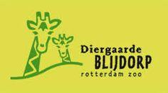 blijdorp rotterdam -