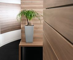 The Lechuza Planters are Beautifully designed planters. The planters are shatterproof, Weatherproof, Frost-proof, UV Resistant and easy to clean. They Lechuza Planters are available with own Irrigation System if required. Irrigation, Floating Nightstand, Planter Pots, Vase, Interior, Furniture, Pearl, Beige, Home Decor